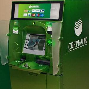 Банкоматы Александро-Невского