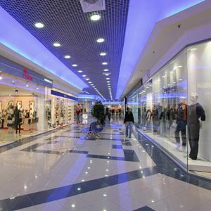 Торговые центры Александро-Невского
